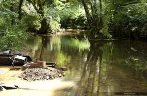 Chercheur d'or alluvionnaire de Bretagne