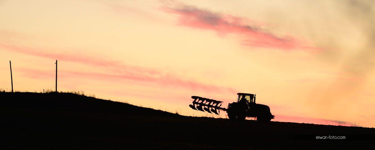 Travaux des champs – retour de terre